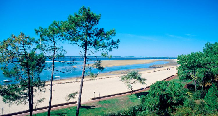 hotel plage arcachon liste h tels plage vue mer bassin arcachon. Black Bedroom Furniture Sets. Home Design Ideas